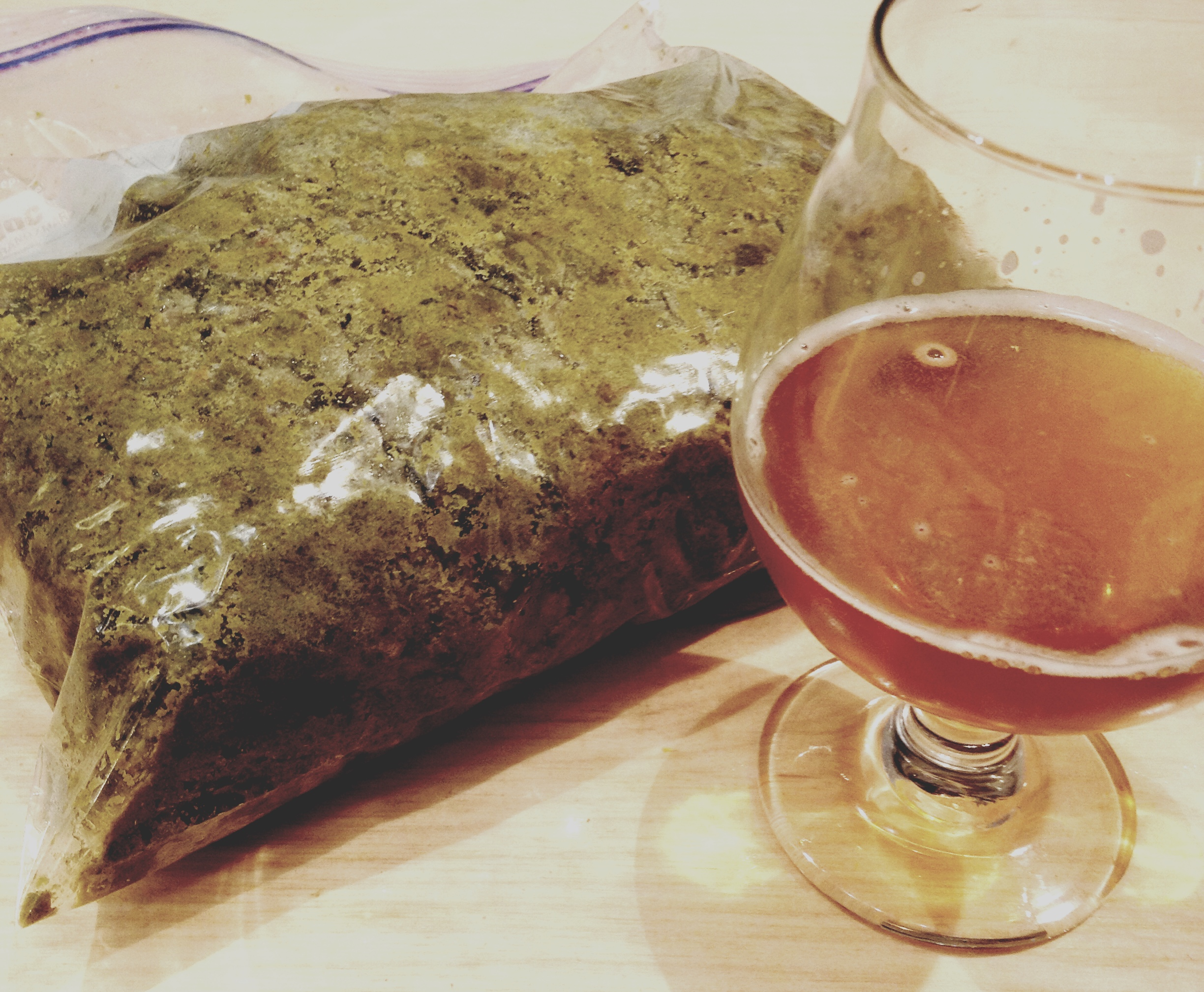 Boil hops pulled out from this batch of DIPA, destined for the compost. Shown alongside pour of the previous batch of DIPA.